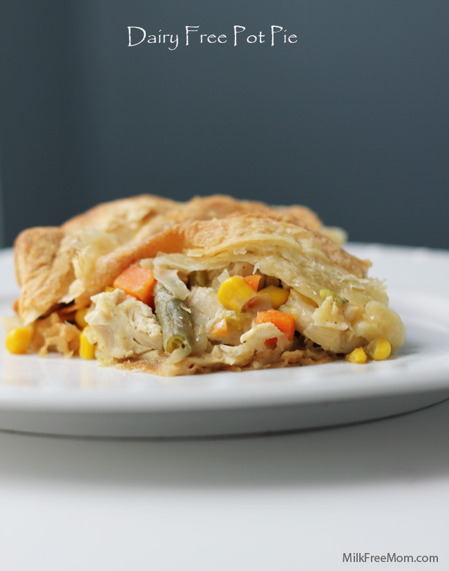 dairy-free-pot-pie1